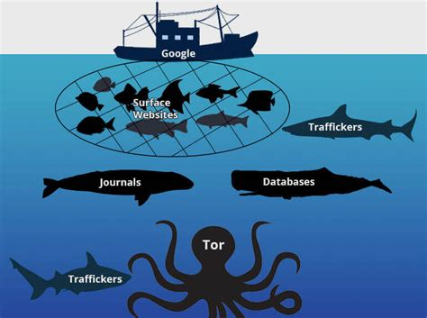 The DarkNet Markets   Links   History   Softwares   Myths