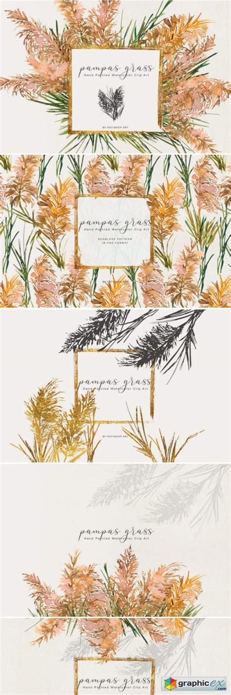Watercolor Pampas Grass Clipart Set » Free Download Vector