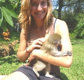 Monkey Rehabilitation in South Africa, Volunteer with