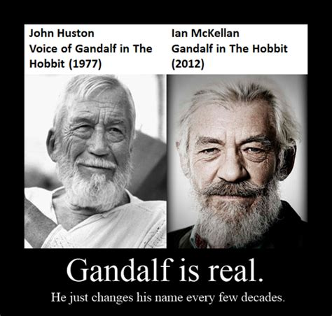 GANDALF IS REAL   Hobbit funny, The hobbit, Lord of the rings