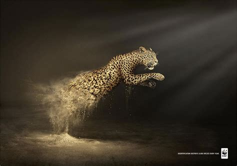 30 Shocking Animal Ad Campaigns That Will Make You Rethink